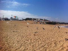 oualidia (Mr Gohan) Tags: beach oualidia
