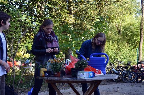 Urban Gardening mit jungen Geflüchteten
