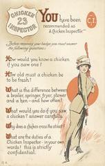 Chicken Inspector 23 (The Cardboard America Archives) Tags: vintage comic postcard jokes sexytimes