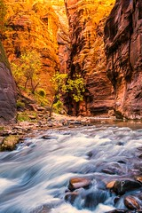 Nikon D810 Zion Subway & Zion Narrows Utah Fine Art Photography! Elliot McGucken Fine Art Landscapes! (45SURF Hero's Odyssey Mythology Landscapes & Godde) Tags: autumn fall nature subway fallcolors fineart wideangle zion zionnationalpark narrows fineartphotography naturephotography wideanglelens naturephotos fallfoilage fineartphotos fineartphotographer fineartnature zionnationalparkphotography elliotmcgucken zionphotography elliotmcguckenphotography elliotmcguckenfineart masterfineartphotography nikond810zionsubwayzionnarrowsfineartphotographyelliotmcguckenfineartlandscapes