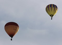 Balloons (Richimal) Tags: balloons fly flying balloon floating hotairballoon float hotairballoons bristolballoonfiesta bristolballoonfestival bristolinternationalballoonfiesta bristolfiesta bristolhotairballoonfestival