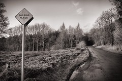 Passing time (Declan.Flynn) Tags: road sign woods streetsign passing