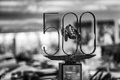 Legendary Number (   (Thank you, my friends, Adam!) Tags: macro art closeup lens photography nikon gallery photographer fine indy legendary number excellent 500 dslr  indy500