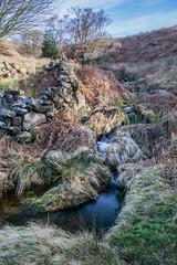 goathland-0214 (moose2484) Tags: sky landscape outdoor yorkshire northyorkshire goathland grosmont