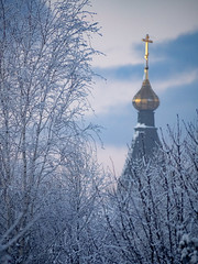 / Dormition Church in Vitenevo (svraskin_k) Tags: winter snow church nature architecture rural landscape countryside russia cupola dome russian orthodox           moscowregion    cupol   micro43  vitenevo olympusomdem1 panasoniclumix100300mm