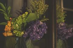 laissez les bons temps rouler (EXPLORE # 9) (jeneksmith) Tags: wood flowers light plants reflection green leaves yellow canon gold mirror flora pretty shadows purple bouquet delicate canoneos70d