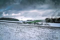 Trees, Fields and Clouds (Claudia G. Kukulka) Tags: schnee trees winter sky snow field clouds feld felder himmel wolken fields bume