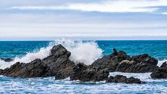 Kaikoura Waves (lightcubex) Tags: new landscape island waves south zealand kaikoura