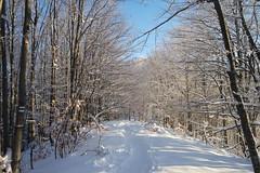 SAM_9329 (pacyphotos) Tags: winter mountain hiking bulgaria stara  karlovo planina  amaritsa kupena bultarian