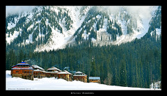 Arang Kel, Neelum Valley Kashmir Pakistan (W A R P D R I V E) Tags: morning trees pakistan snow love forest landscape woods nikon hiking valley kashmir snowfall himalayas kel 2470 neelum sharda arangkel