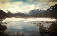 Fundamental (Tracey Rennie) Tags: alberta banff mountrundle banffnationalpark vermilionlakes