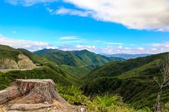 Top of the Rimutaka Range-3 (Snoflake2013) Tags: blue autumn trees newzealand sky green clouds landscape stump wellington