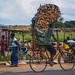 Firewood Bicyclist