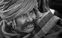 Pushkar-20151121-08.20.40 - 03423-Edit-3 (Swaranjeet) Tags: pushkar mela animalfair camelfair rajasthan india portrait people ethnic rajasthani indian november 2015 sjs swaranjeet sjsvision sjsphotography head shots portraits human culture emotions humanity swaranjeetsingh headshots ruralindia ruralindians indians candid