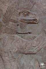 British Museum (andrea.prave) Tags: uk england london museum museu muse londres museo britishmuseum londra basrelief inghilterra  mze    bassorilievo bajorrelieve