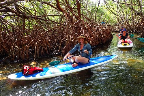 3_5_16 Kayak Paddleboard Tour Sarasota FL 07