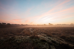 While you were sleeping (kceuppens) Tags: sky sun nature sunrise landscape nikon long exposure ray outdoor natuur beam filter le lee nikkor lucht sou zon antwerpen buiten heide landschap zonsopgang kalmthout 1635 kalmthoutseheide straal d810 leefilter nikond810