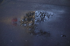 Da hood in da puddle (Pascal Volk) Tags: reflection berlin puddle evening abend reflexion spiegelung pftze berlinlichtenberg landsbergerallee althohenschnhausen sonydscrx100