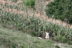 IMG_6590 (wi dodow) Tags: cerita tuban bukit anakanak kancing pesonaindonesia
