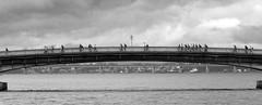 Rio de Janeiro (J Felipe) Tags: bridge brazil rio arquitetura brasil riodejaneiro architecture puente arquitectura cidademaravilhosa ponte guanabara baiadeguanabara 2016 rio2016 juanfelipegonzalez