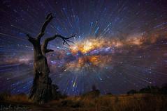 zoom star explosion (erindarby62) Tags: longexposure stars spiral nikon zoom nightsky gitzo startrails d800 milkyway nightlandscape startrail circumpolar 1424 explodingstars d800e nikond800e lincolnharrison zoommachine spiralstartrails zoomingmachine
