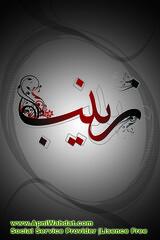 Salam Bibi Zainab | apniwahdat (apniwahdat) Tags: art informations inspiring