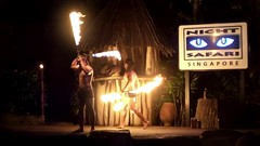 Playing with fire (Stinkee Beek) Tags: nightsafari thambuakar