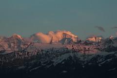 Mönch - Jungfrau in den Berner Alpen - Alps im Berner Oberland im Kanton Bern der Schweiz (chrchr_75) Tags: hurni christoph schweiz suisse switzerland svizzera suissa swiss chrchr chrchr75 chrigu chriguhurni märz 2016 mönch kantonbern kantonwallis kantonvalais berg mountain montagne alpen alps albumjungfrau jungfrau viertausender montagna berner oberland