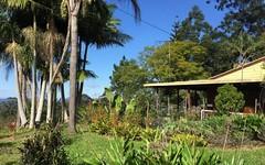414 Lillian Rock Road, Lillian Rock NSW