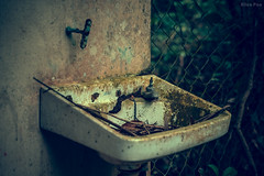 --Detail of school ruins. (AllenPan02) Tags: old school water dispenser ruins close 90s reminiscence