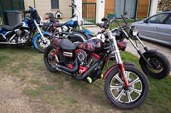 _R001329.jpg (Alain Stoll) Tags: bike indian motorbike harleydavidson bikers hellsangels tancrou