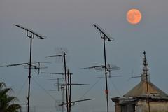 Blue (red) moon (Thomas Roland) Tags: travel blue sunset red moon castle portugal de europa europe pastel lisboa lisbon moonrise jorge castelo lissabon portuguese so antenna nata antennas rejse