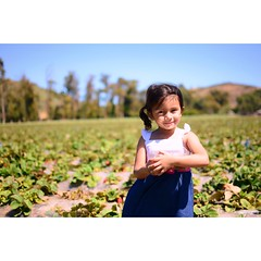Strawberry Fields Forever (jflo2photography) Tags: summer baby cute girl kids barn photography strawberry photos farm childrensphotography jflo2photography