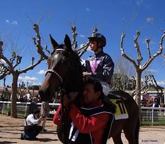 Madrid. Hipdromo de la Zarzuela. (Caty V. mazarias antoranz) Tags: madrid horses racetrack riders apuestas racehorses jinetes adayattheraces enelhipdromo hipodromodelazarzuela undaenlascarreras sundayattheracetrack horsesinmadrid