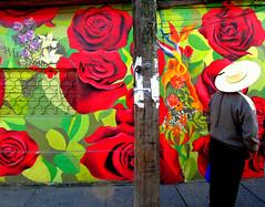 """""""Rosas Rojas y Azules"""". (""""YONO"""") Tags: chile city color verde art colors azul brasil de graffiti los mural paint arte gente tag 14 magenta rosa full master splinter linares latex lina graff piece visual rosas día firma esp febrero con verdes pincel calles pintura yono pinturas artista roja huasca sudamerica rojas chileno acrilico enamorados pieza brocha azules pinceles huaso callejero mofli rodillo rojos muralista brochas mofly maipú pigmento sudaka graffitero sudaca pigmentos chupalla chupaya magentas artistazo sellador esplinterino artistaso muralero espliner"""