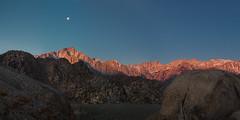 Moonset Over the Sierras (dubland) Tags: california moon mountains nature sunrise landscape desert outdoor panoramic mountwhitney sierranevada lonepine moonset easternsierras alabamahills calebweston