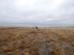 Airds Moss bog enhancement February 2016 (Coalfield Environment Initiative) Tags: nature scotland moss conservation eat restoration habitat bog mire enhancement moorland ayrshire muirkirk excavators rewetting peatdams ditchblocking