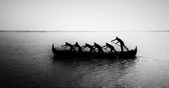 row row row your boat (morag.darby) Tags: venice blackandwhite bw italy monochrome silhouette mono nikon noiretblanc gondola nikkor gondolier regatastorica d3300