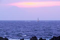 Do you see Fuji? (shinichiro*) Tags: japan spring fuji may jp  kanagawa crazyshin   miura 2016     arasaki asiandust   sd1m sigmasd1merrill sigma18300mmf3563dcmacrooshsm 20160501sdim2080