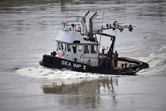 Tugboat Sea Imp 10 (drmack2) Tags: bc accident x fraserriver sinking catherwood