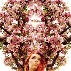 Pine (Melissa Marie Klucaric) Tags: flowers selfportrait flower tree me self canon myself 50mm blossom portait blossoms melissa symmetry symmetrical canont3i melissamarieklucaric