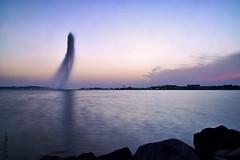 #meshallens #photography #photoshot #photos #love #skate #shooting #camera #talent #show #Jeddah #ksa #redsea # #صور #سكيت #كاميرا #البحر_الأحمر #فوكس #تصويري #المصورين_العرب #التصوير_الأسبوعي #هي_اقلك (meshallens) Tags: show camera love photography photos redsea talent skate shooting jeddah photoshot صور ksa تصويري البحرالأحمر كاميرا فوكس سكيت المصورينالعرب التصويرالأسبوعي هياقلك meshallens