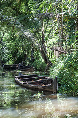 Abandoned boat (james_hammond) Tags: trees india green water boat kerala shipwreck rivers woodenboat cochin kochi backwaters sunkenboat
