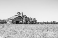 (itsbrandoyo) Tags: history abandoned nature cemetery graveyard farmhouse barn rural store general country nun historic cotton liveoak plantation blackriver depot wisteria manning oaktrees cades liveoaks lowcountry kingstree williamsburgcounty coopersacademy