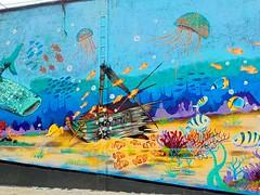 Un acuario!, de la calle. (Xic Eseyosoyese (Juan Antonio)) Tags: de la calle nikon un graffitti coolpix urbana acuario pintura mexica s33 tequexquinahuac