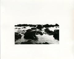 (?) Tags: film print blackwhite trix fiber southkorea jeju ilford warmtone seogwipo darkroomprint