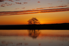 Every sunset brings the promise of a new dawn (Lancashire Lass ...... :) :) :)) Tags: sunset tree water silhouette reflections evening countryside spring peaceful reservoir lancashire explore april serene ripples windturbines longridge ribblevalley toplodge tootleheights