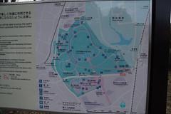 DSC02829.jpg (randy@katzenpost.de) Tags: winter japan yoyogikoen shibuyaku tkyto japanurlaub20152016