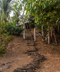 Day 290. Pretty good night sleep behind a gas station, but it's crazy humid here, have been drenched in sweat since 7:30. The road from the border is pretty barren. Stopped for a moment when I saw this beautiful walkway to a house that was tucked away in