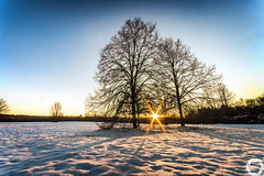 Winter 2016 (MSPhotography-Art) Tags: schnee winter snow nature clouds germany landscape deutschland outdoor natur wolken sonnig landschaft wandern wanderung badenwrttemberg schwbischealb reutlingen swabianalb